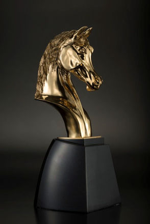 Picture of Head Horse Trophy (Big) - KAAHCAD